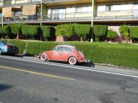 roof rack | VWs in Portland | Page 2