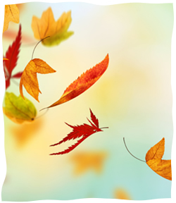 Fall Leaves Clip Art Wallpaper Blowing In The Wind Welcoming Redemption Into Our Lives