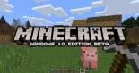 Windows Minecraft Edition