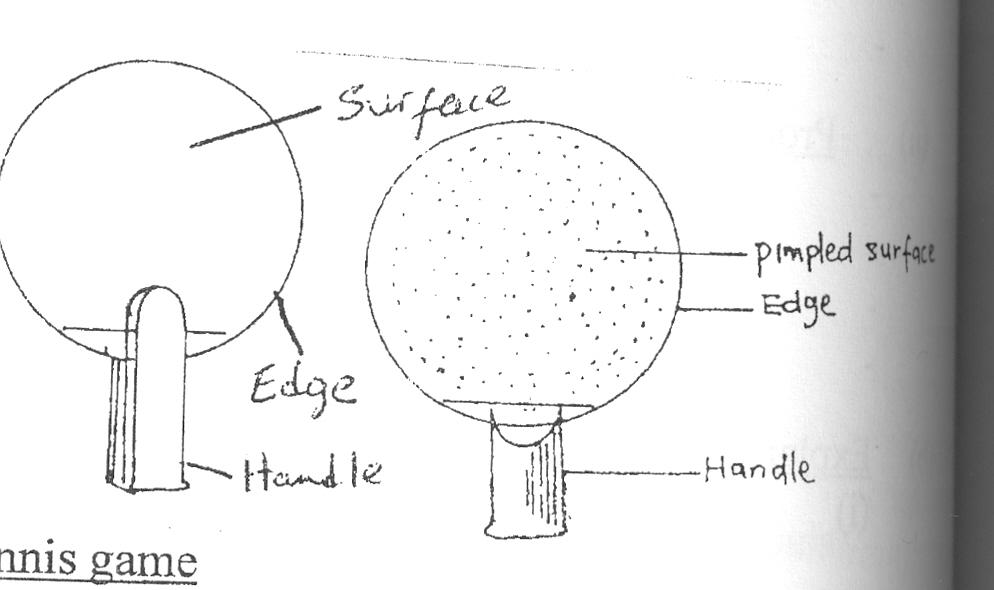 Bat Diagram Label Wiring Diagram
