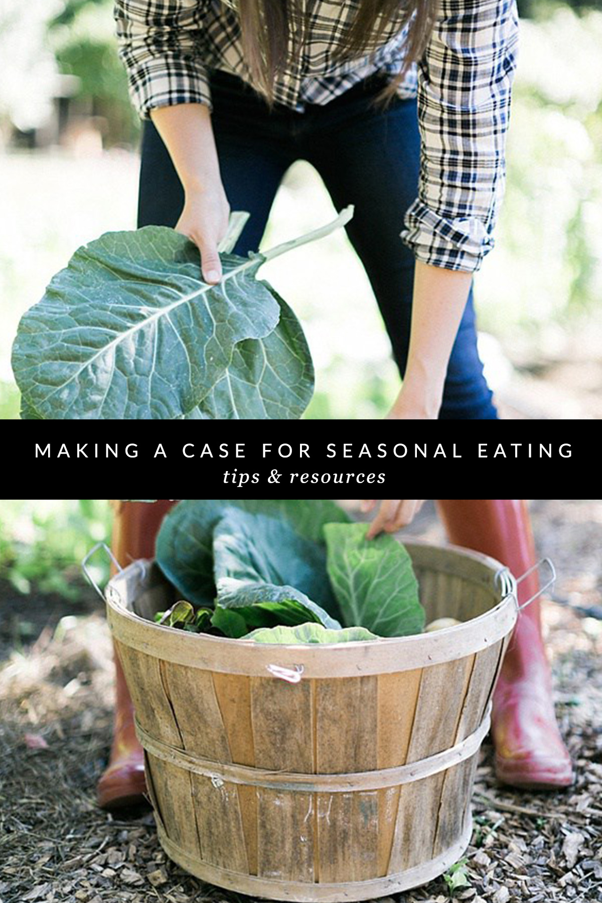 Seasonal eating, @waitingonmartha