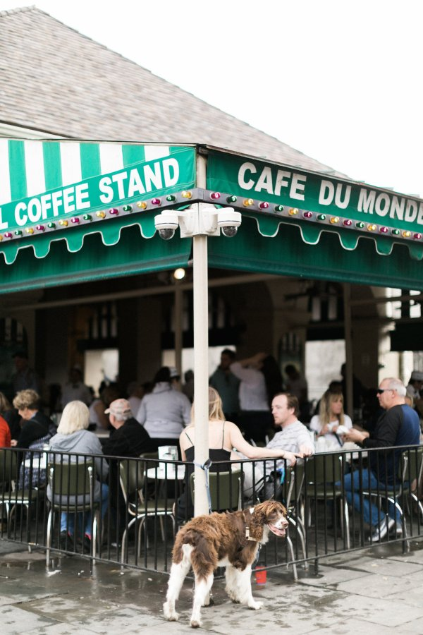 Where To Eat New Orleans , Cafe Du Monde