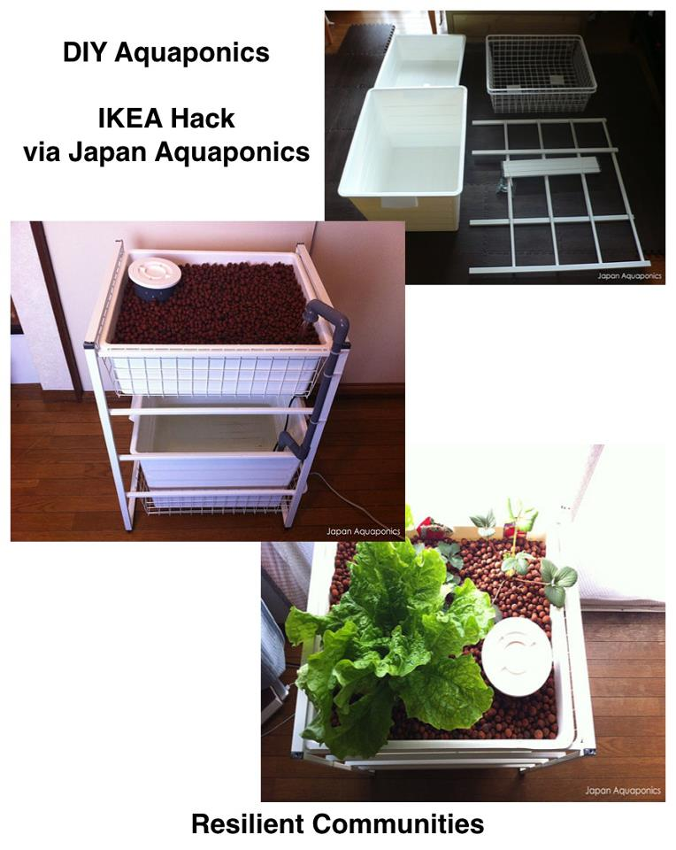 Ikea hack aquaponics