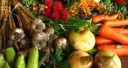 Shocking Decline of Nutrients in Food