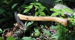 Gränsfors Bruks Small Forest Axe Review