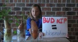 """Adorable Girl Discovers The Shocking Difference Between """"Dead"""" Food And Organic Produce"""