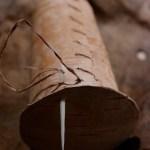 Birkenbecher nähen mit Weidenbast und Knochennadel