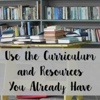 Use the Curriculum and Resources You Have