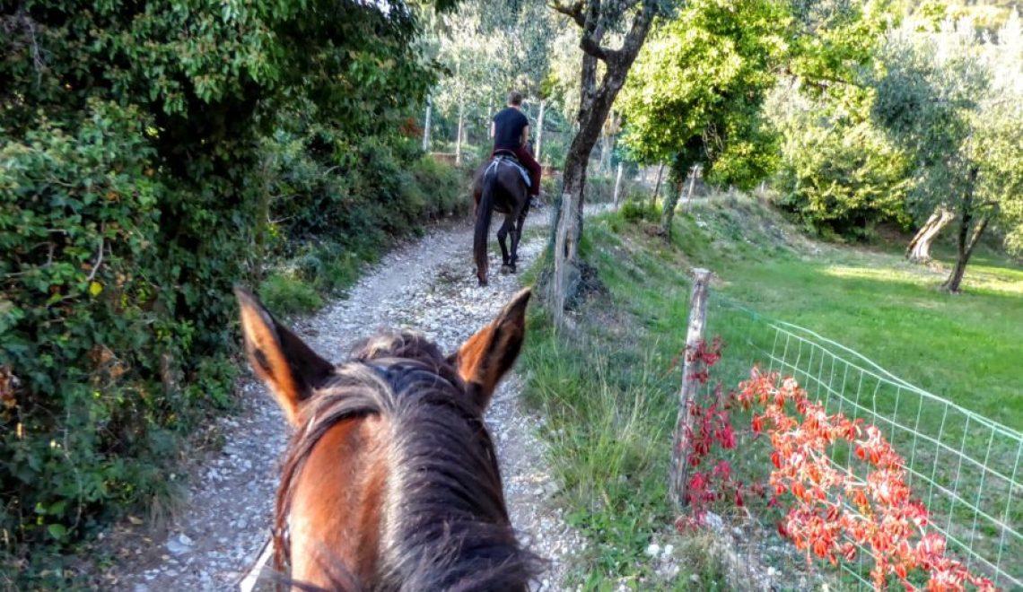 Horse riding Lake Garda