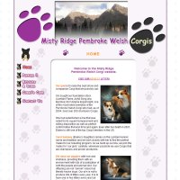 Misty Ridge Corgis