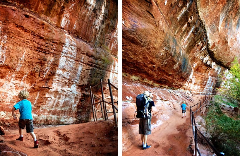 Zion Car Shuttle Spend A Day In Zion National Park With Kids