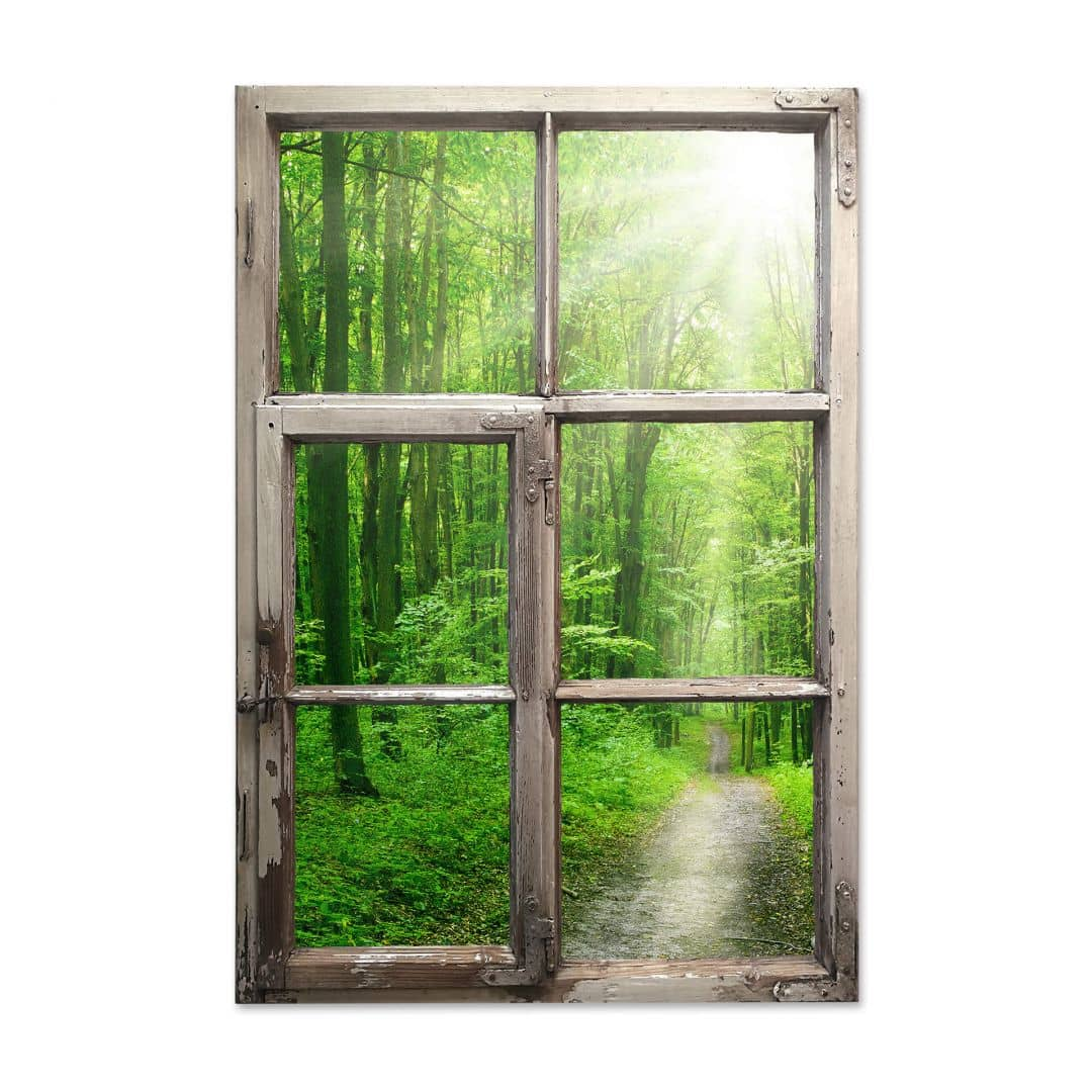 Bettwäsche 3d 3d Wandtattoo Fenster Shabby - Sunny Forest | Wall-art.de