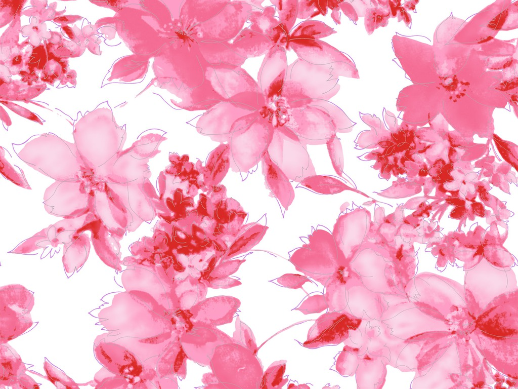 Black And Red Wallpaper Pink Flowers Wallpaper Laptop Hd 4743 Wallpaper