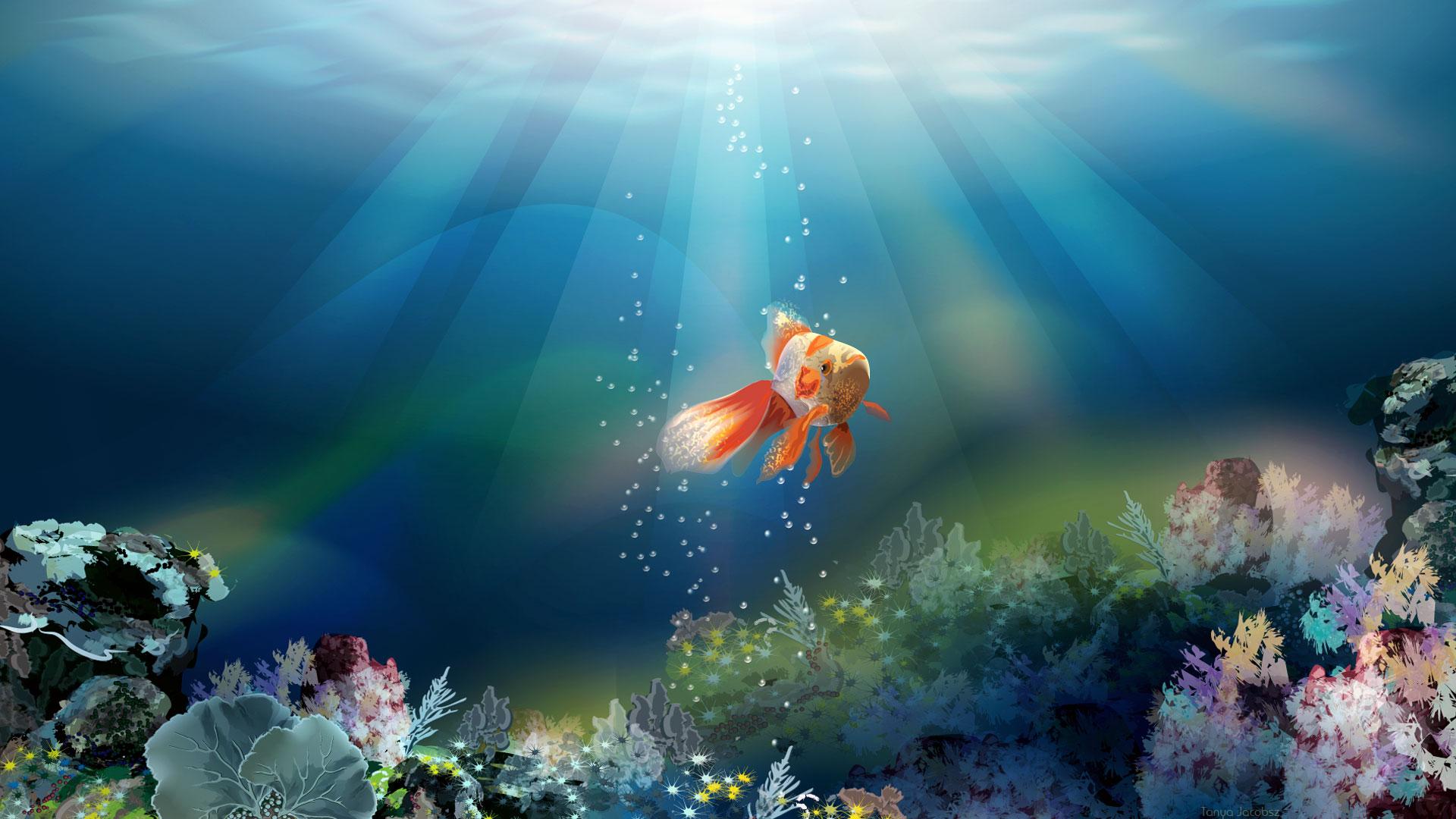 Cute Wallpapers Of All The Animals Fish Wallpaper 3d Desktop 10711 Wallpaper Walldiskpaper