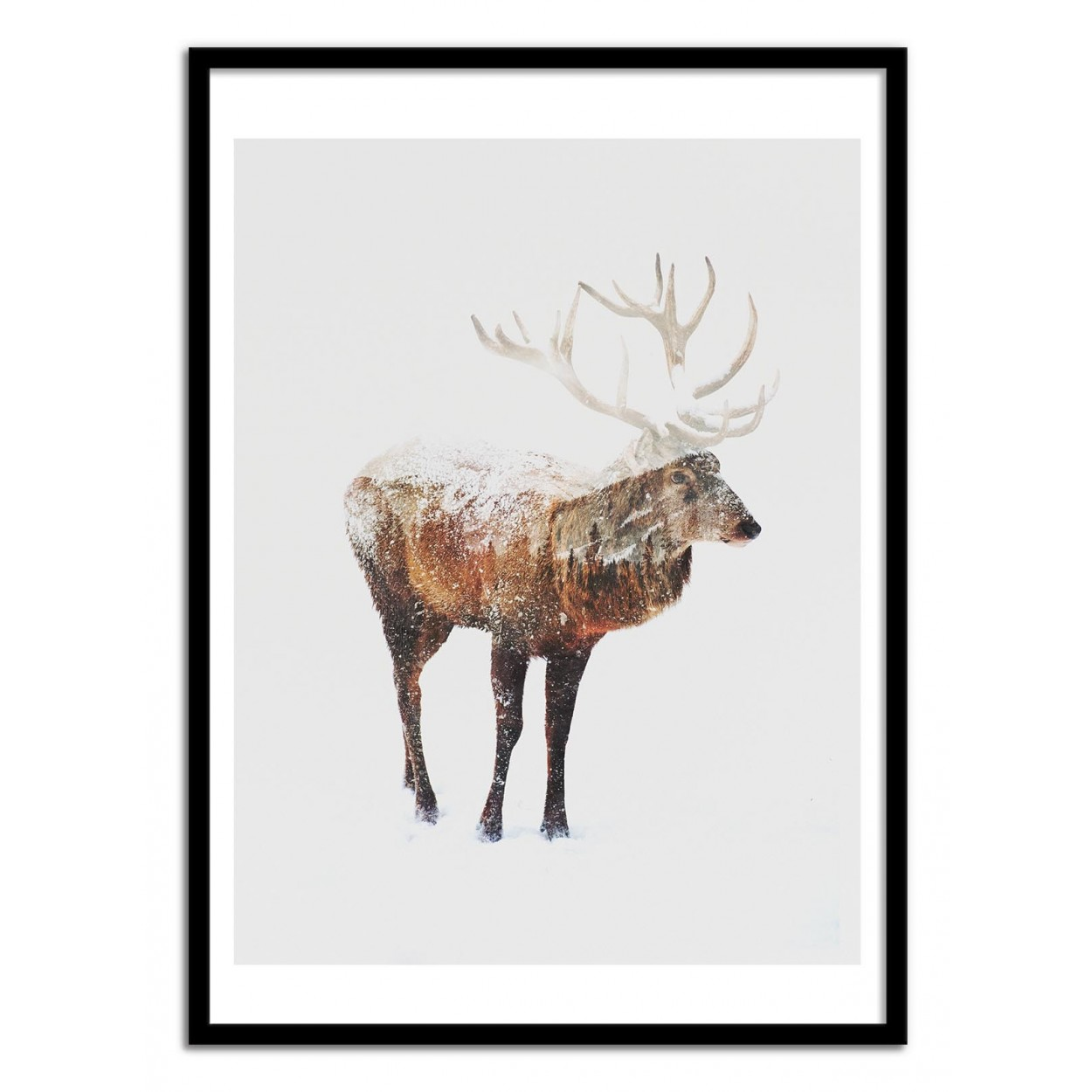 Poster Cerf Affiche Art Poster Print Frame Andreas Lie Animal Snow Winter