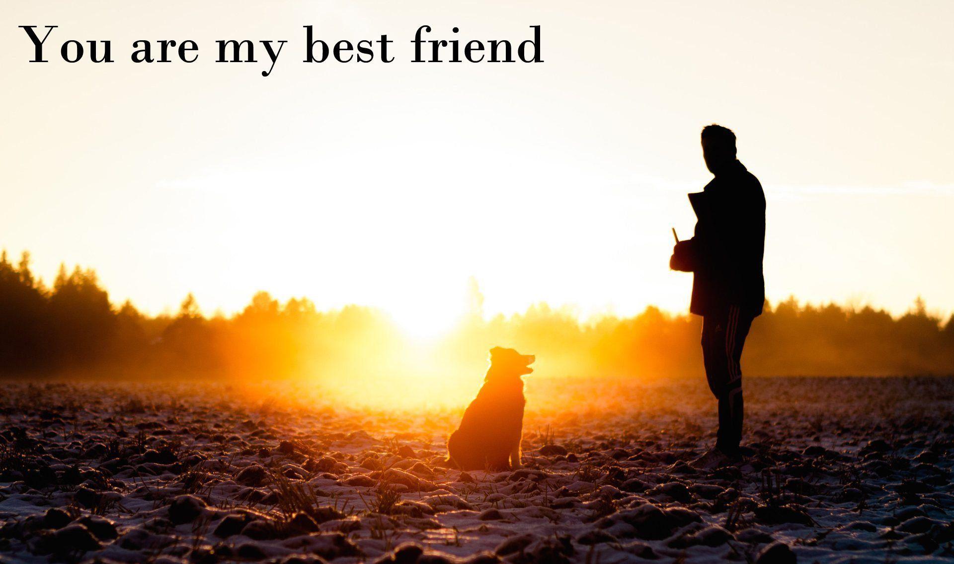 Fullsize Of My Best Friend Quotes