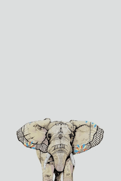 Cute Tribal Patterns Wallpaper Elephant Wallpapers For Iphone Group 62