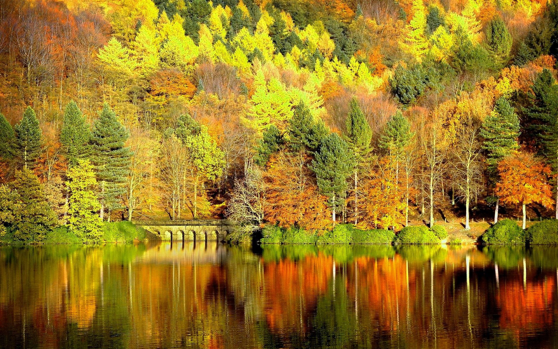 Fall Season Live Wallpaper For Android Autumn Wallpapers Download Group 85