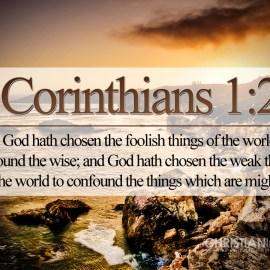 1 Corinthians 1:27 Wallpaper