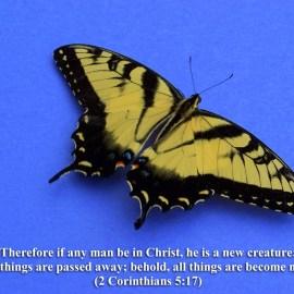 1 Corinthians 5:17 Wallpaper