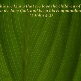 1 John 5:2 Wallpaper