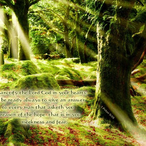 1 Peter 3:15 christian wallpaper free download. Use on PC, Mac, Android, iPhone or any device you like.
