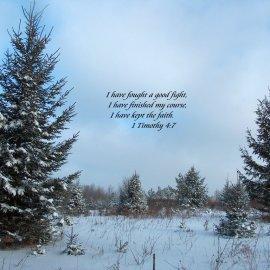 1 Timothy 4:7 Wallpaper