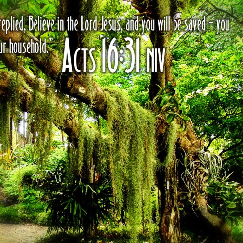 Acts 16:31 christian wallpaper free download. Use on PC, Mac, Android, iPhone or any device you like.