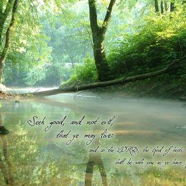 Amos 5:14 Wallpaper