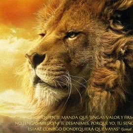 Aslan and Bible Wallpaper