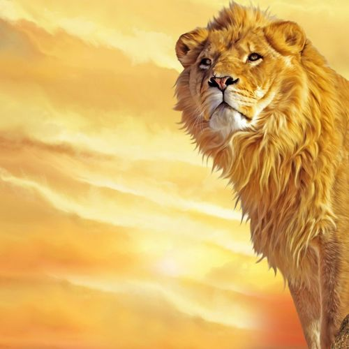 Awakening Lion christian wallpaper free download. Use on PC, Mac, Android, iPhone or any device you like.