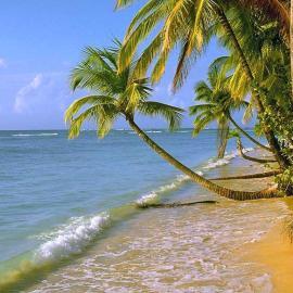 Beach and sea Wallpaper