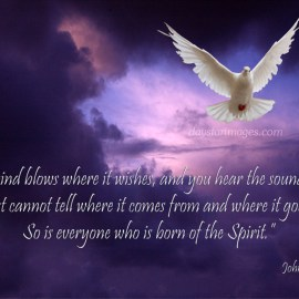 Born of the Spirit Wallpaper
