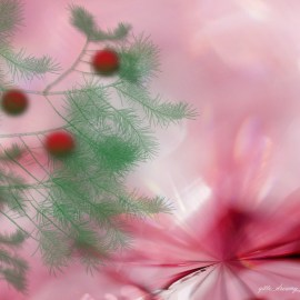 Christmas – Pink Wallpaper