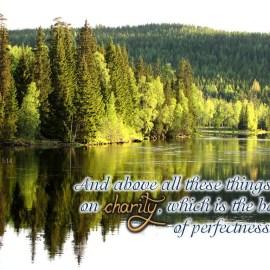 Colossians 3:14 Wallpaper