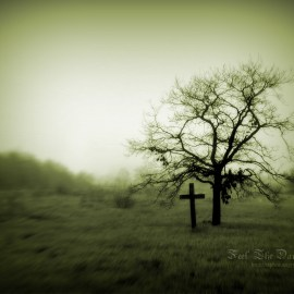Cross – And tree Wallpaper