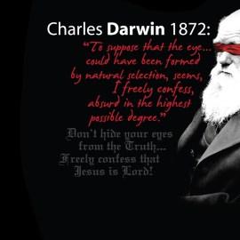 Darwin was Wrong Wallpaper