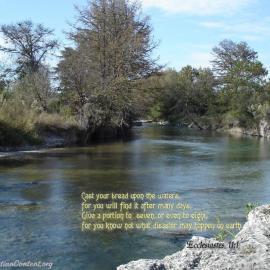 Ecclesiastes 11:1 Wallpaper