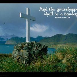 Ecclesiastes 12:5 Wallpaper