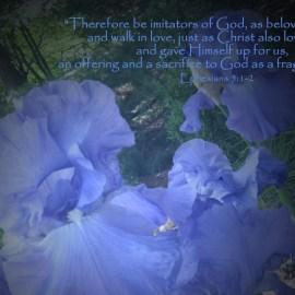 Ephesians 5:1-2 Wallpaper