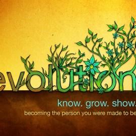 Evolution Wallpaper