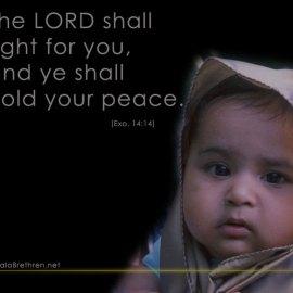 Exodus 14:14 Wallpaper