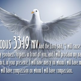 Exodus 33:19 Wallpaper