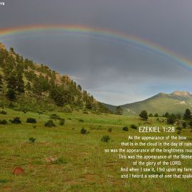 Ezekiel 1:28 Wallpaper