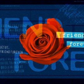 Friend Forever Wallpaper
