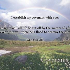 Genesis 9:11 Wallpaper