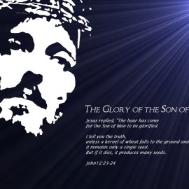 glory of the son of god Wallpaper