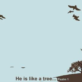 He is like tree Wallpaper