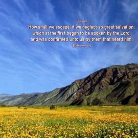 Hebrews 2:3 Wallpaper
