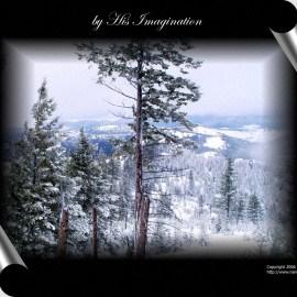 His Imagination Wallpaper